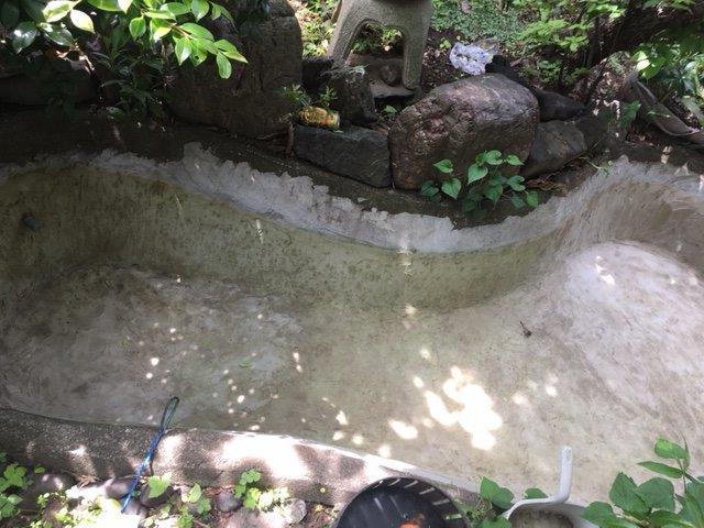 水抜いて、簡単に洗った後の池